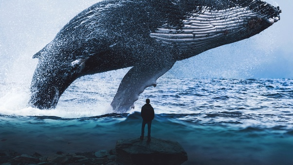 Is the blue whale truly the biggest animal to have ever