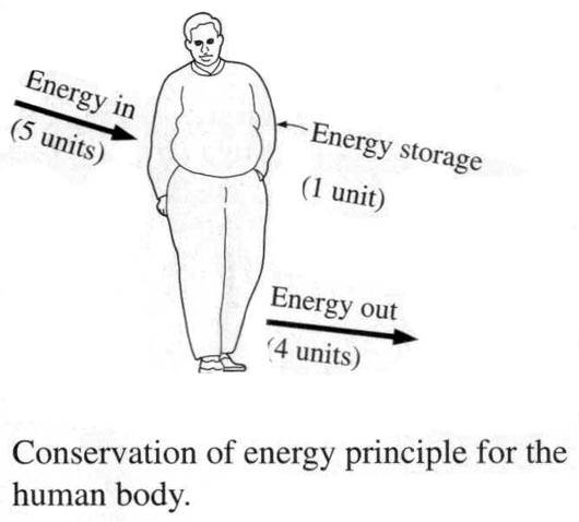 What Are Daily Examples Of The 1st Law Of Thermodynamics Oxidation