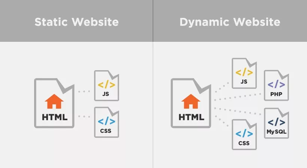 What are some common examples of static websites and dynamic