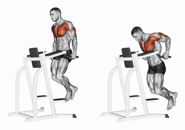 What Exercise Can Replace The Dumbbell Decline Bench Press Quora