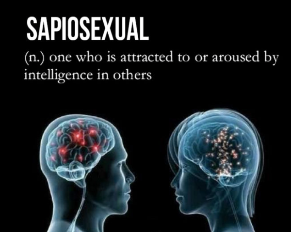 What does sapiosexual mean