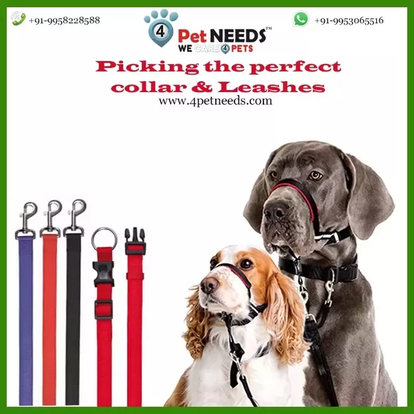 2 Pack Leader Collar The Helps Keep Slip At Top Of Neck Which Is Most Sensitive Part