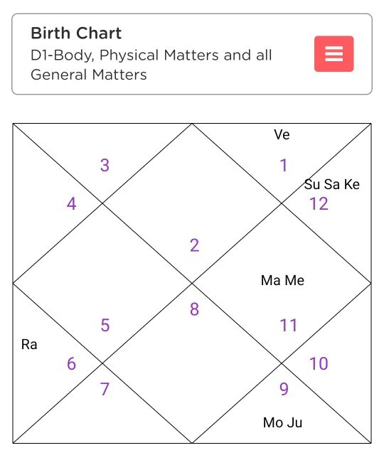 What are the Vedic astrology combinations for a career as an