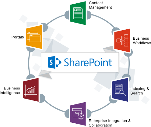Sharepoint Designer  Book