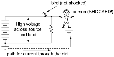 A bird perched on a high voltage wire is not killed by the current ...