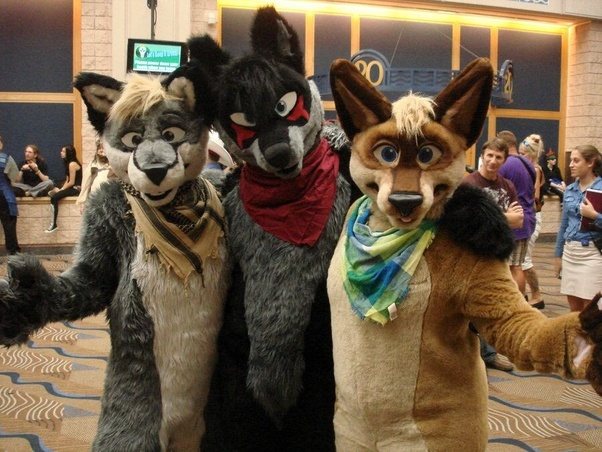 What is the appeal behind being a furry? - Quora