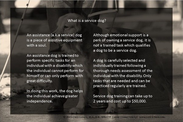 If I were issuing service dog letters as a psychologist, what ...