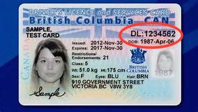 How to find out my BC drivers licence number - Quora