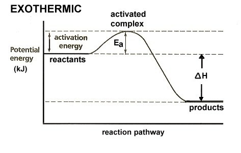 Exothermic Energy Level Diagram With Catalyst Diy Enthusiasts