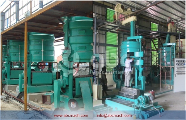 How to start a groundnut oil production in Nigeria with less