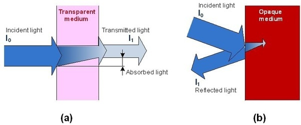 Can A Mirror Reflect Photons Present In Sunlight? If Yes, Do Absorbed Light Definition Absorption Of Light Examples Transmission Of Light Examples