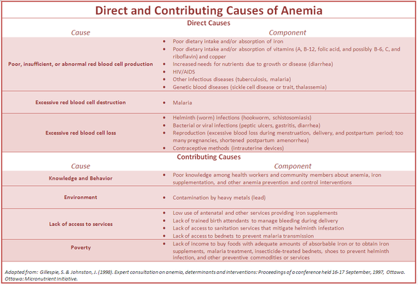 can a poor diet cause anemia