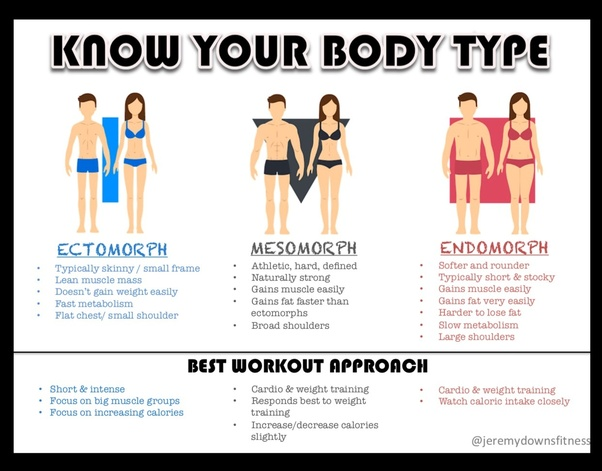 What are body types? I.e endomorph, mesomorph and ectomorph - Quora