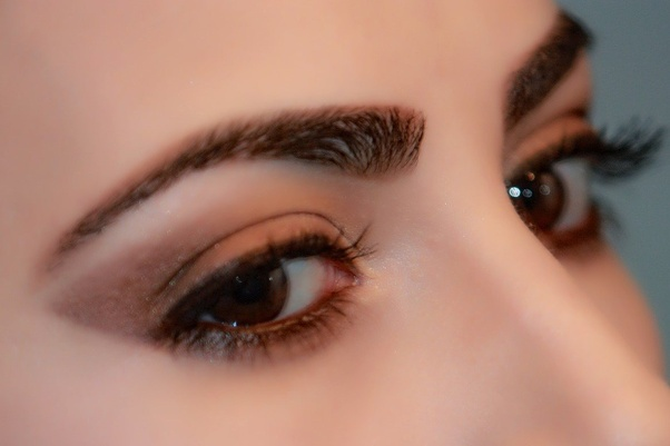What makes eyebrows grow back? - Quora
