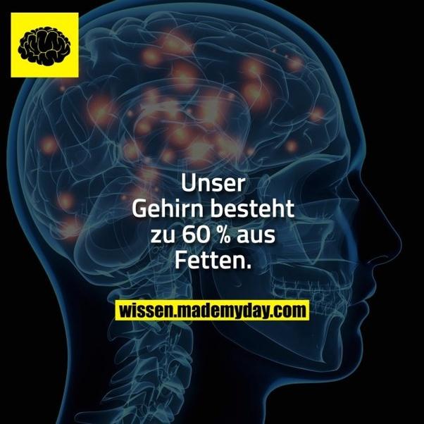 Was würde passieren, wenn wir auf 40 Prozent unseres Gehirns ...