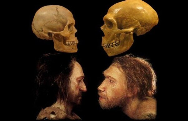 How did early Homo sap...