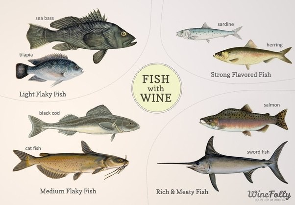 What red wines go well with fish quora for Red wine with fish