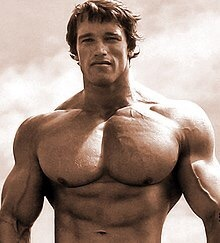 Who is the best bodybuilder of all time? - Quora