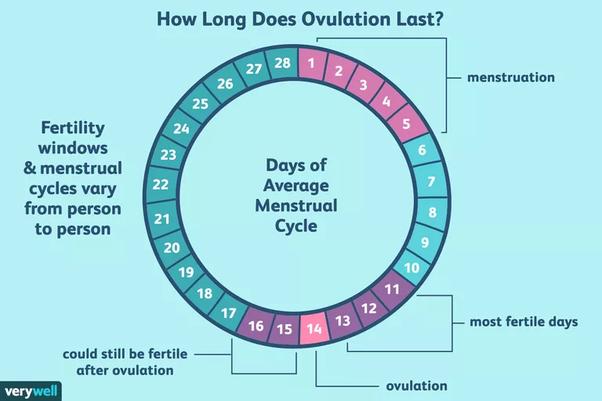 sex 4 days after period