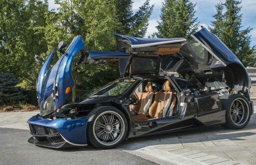 What are the type of side doors on a Pagani Huayra called? - Quora