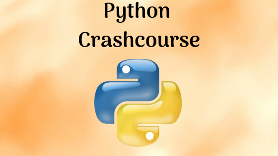 Which language should I learn first between Python and Java in