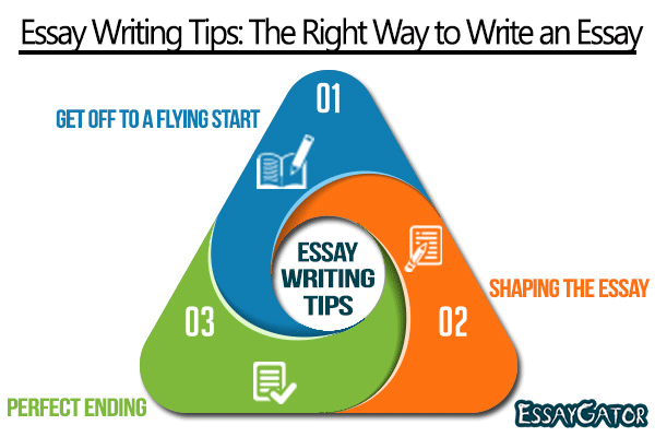 the right way to write an essay 2 how to write great essays chapter 1 organization guidance and direction through the writing process, especially if you are in a timed situ-ation organization lets you see how your many developing ideas fit within a framework, and clearly maps out any type of essay you are required to write organization also benefits the reader.
