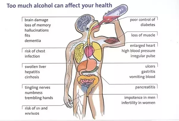 Does alcohol affect the human brain for long term quora alcohol in the long term is notorious for its major effects on the liver general population always talks about a rotten liver or a liver that fails pretty ccuart Choice Image