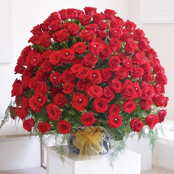 What flowers are special for a marriage anniversary? - Quora