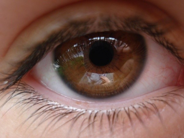 How do hazel and light brown eyes differ? - Quora