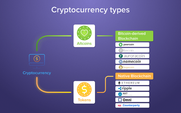 cryptocurrency difference between coin and token