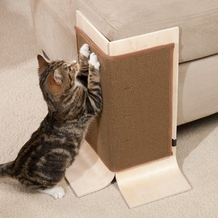 Put Up Sticky Paws Tape Or A Scratching Board Beside The Sofa Could Be Fairly Effective As Cats Would Get Used To New Station And