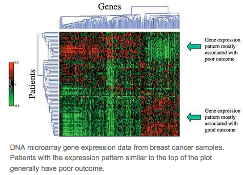 How does the expression level differ between cancerous genes