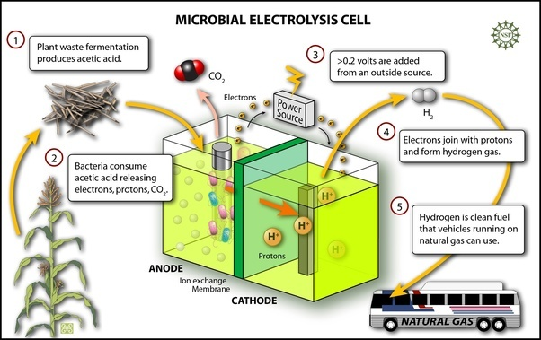 Microbial Fuel Cells (MFC) Market