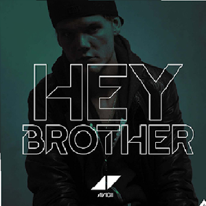 What does the song 'Hey brother', by Avicii, mean? - Quora