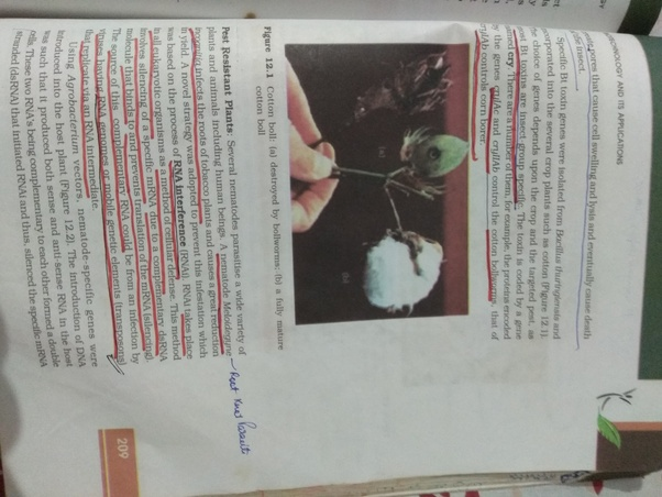 Ncert Biotechnology Book