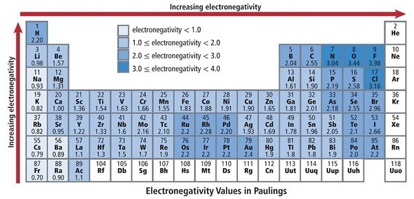 Which element is a highly electropositive alkaline metal quora the periodic trend would be the opposite of the periodic trend of electronegativity the highest electropositive element is francium urtaz Image collections