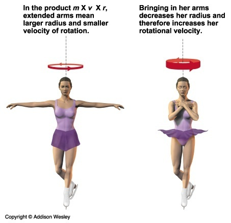 How Does Conservation Of Angular Momentum Follow From Newtons Laws
