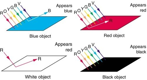 if black absorbs all light then how do we see the colour black