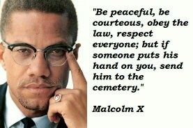 what did malcolm x do to make a difference