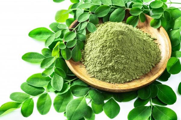What are the uses of moringa oleifera? - Quora