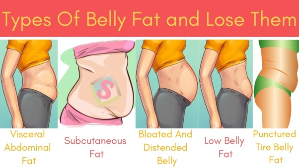 how fast can you lose visceral fat