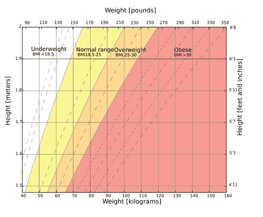 How much does a 5'2 13 year old girl should weight? - Quora