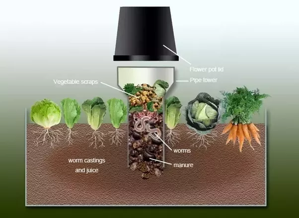 Superieur Or Self Composting Pots, Which Are Just A Large Pot Filled With Kitchen  Scraps And Garden Waste Topped With A 6 Inch Layer Of Potting Mix.