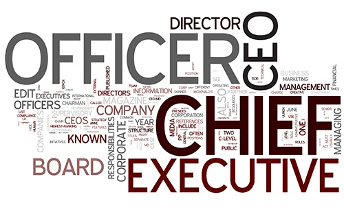 What is c level executive