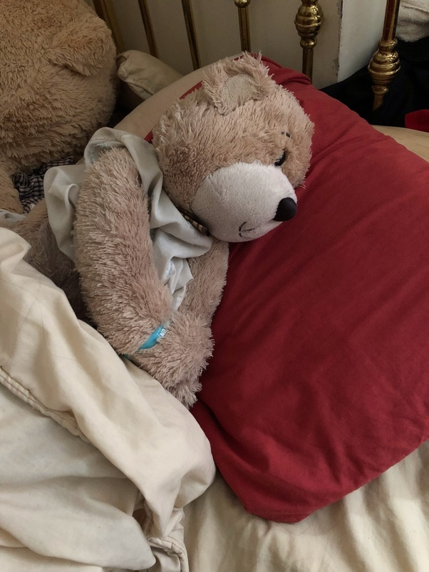 I'm 15 years old and I still sleep with a teddy bear  Is