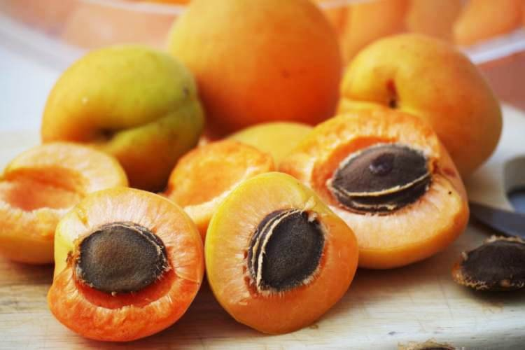 Health benefits and facts of apricot