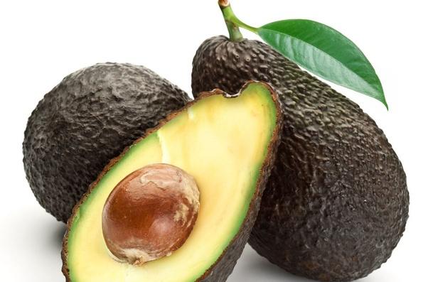What is Avocado? - Quora