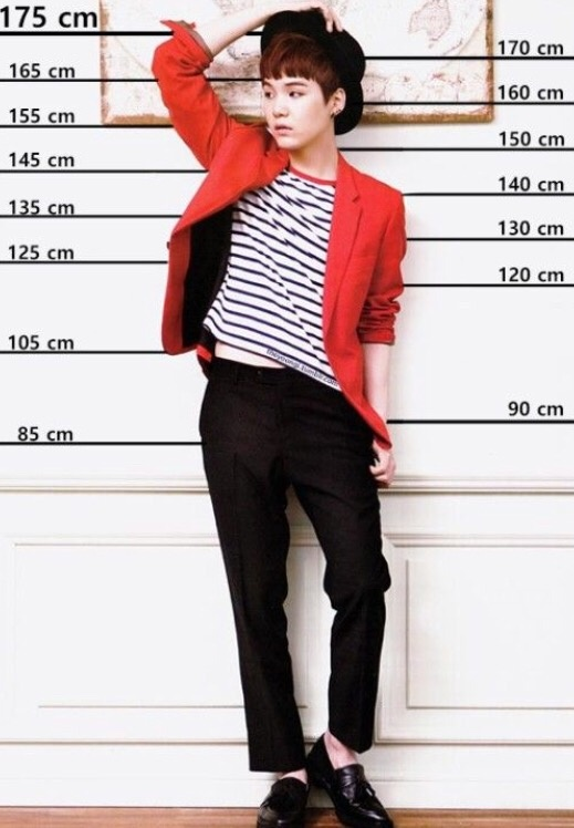 How tall are all of the BTS members? - Quora