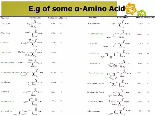 What Is The Chemical Formula For Amino Acids Quora