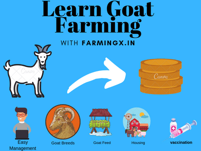 How much one can earn in goat farming in India? - Quora